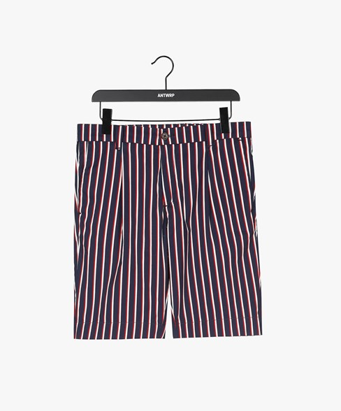 SCOTTIE-D204 | Striped Pleated Chino Shorts